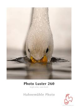- - 9826014 Photo Luster 260g A3+ Box 25f - 10 641 932